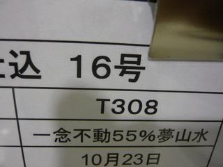 P1020285.JPG